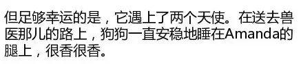重庆千赢国际手机版下载火化